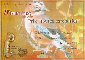 LYS 2007 Printemps des ARTS PRIX TTES Categories
